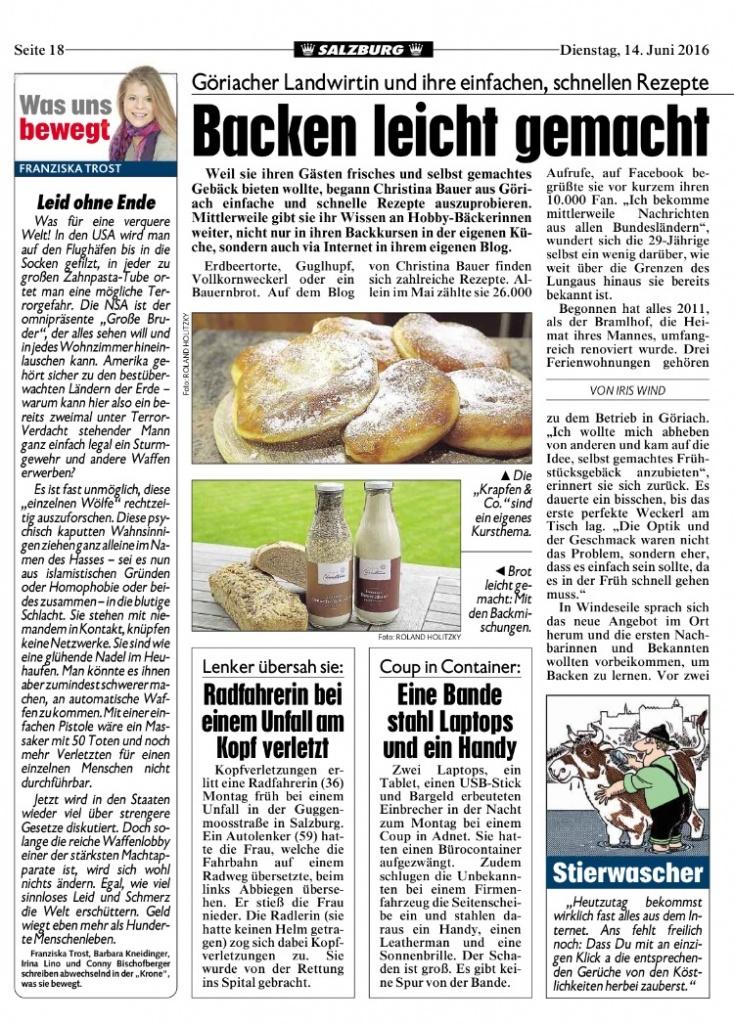 Kronen-Zeitung-2